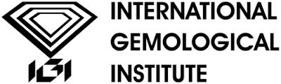 Logo IGI